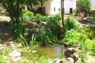 Jardim / Garden